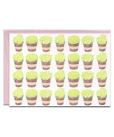 Succulents_new_colors