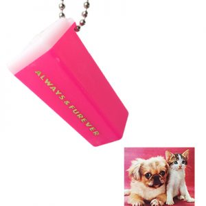 pink cat dog
